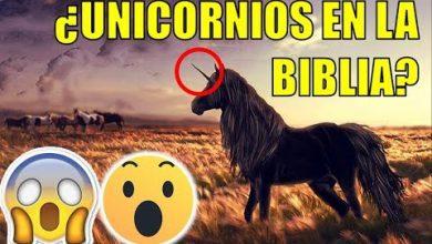 Photo of Las criaturas más extrañas que aparecen en la Biblia